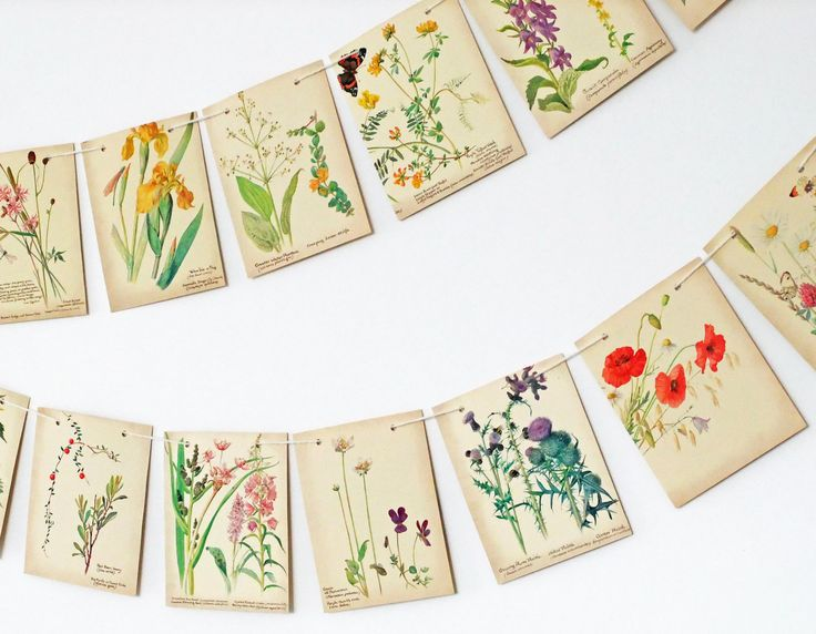 Paper Bunting. Summer and Spring Garland. Upcycled. The Country Diary of an Edwardian Lady. Eco-friendly. Wedding Banner. Home Decor. by PeonyandThistle on Etsy https://www.etsy.com/listing/100227822/paper-bunting-summer-and-spring-garland