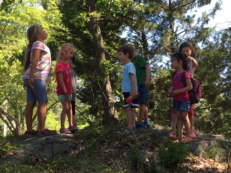 Friends of the Fells Forest Kindergarden