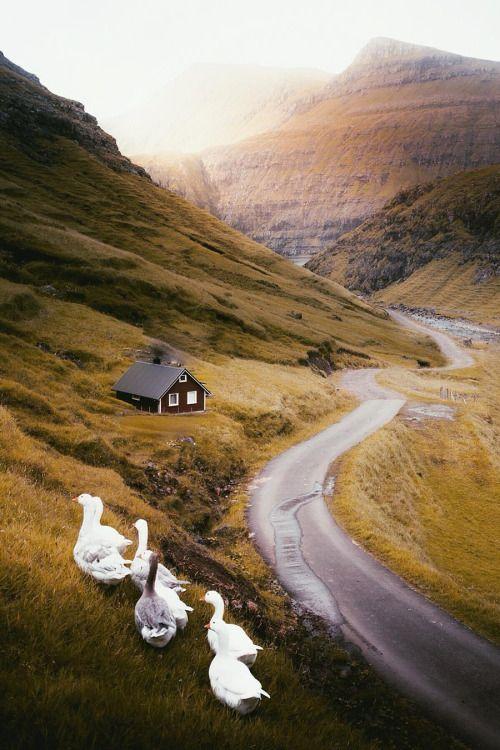 heaven-ly-mind:  Faroe Islands