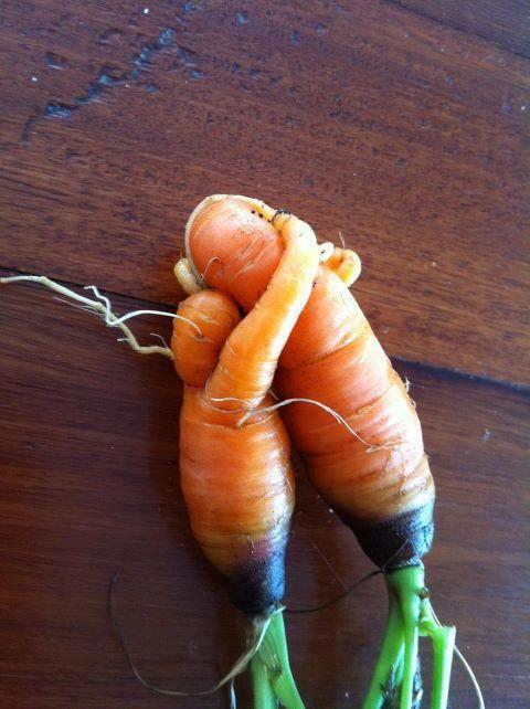 Love amongst the root veggies!