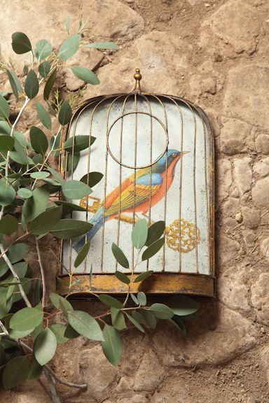 Trompe l'Oeil Birdcages from Natural History