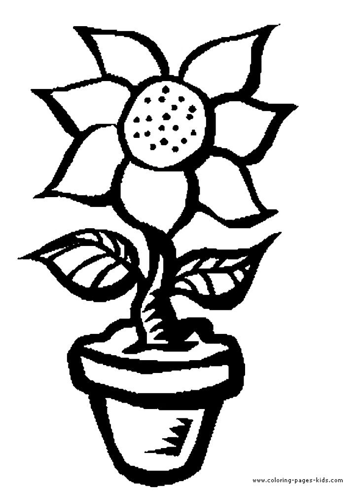Free Flower Coloring Book Pictures For Kids Printable Pages