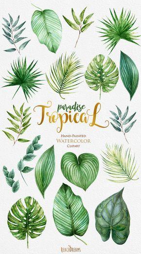 Tropic Clipart, tropische Aquarellblätter, hellgrünes Laub, Monstera, Palme, Dschungelpflanzen, Hochzeitseinladung, Brautdusche