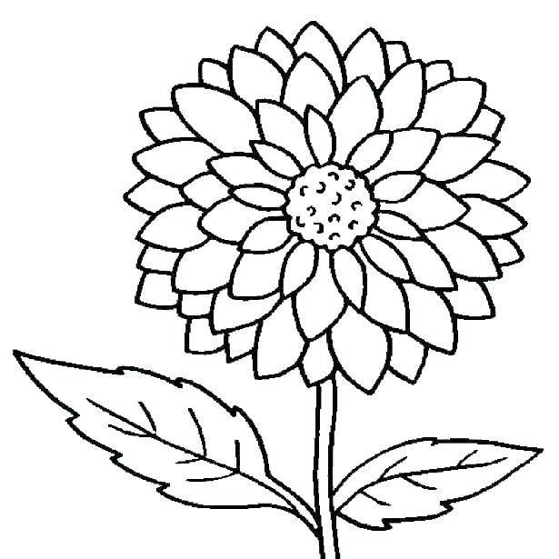 Flower Coloring Pages Simple Amazing Design