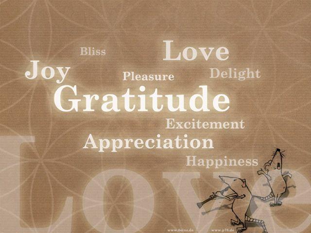 f89f6be86f5ef8ec3ff35b5df9c5a243--attitude-of-gratitude-gratitude-quotes.jpg