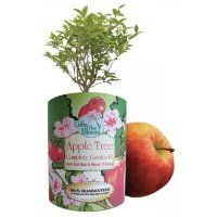 Grow your own apple orchard and enjoy red delicious apples for decades with this complete Apple Tree Orchard Kit. The seeds were carefully selected and are easy to grow.