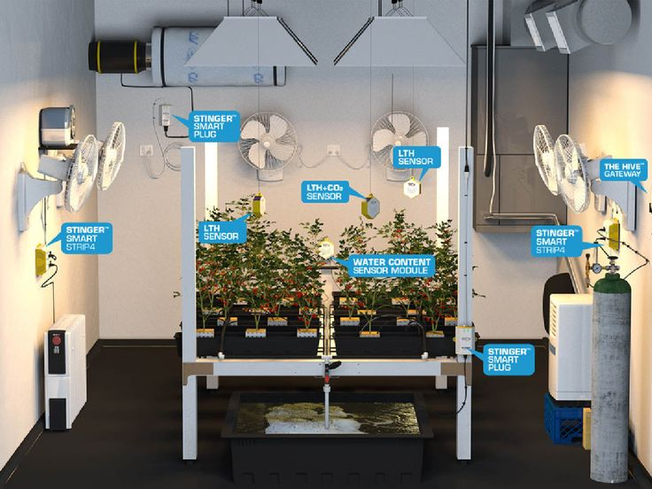 Wireless Marijuana Grow Room Controllers Monitor And Control C02, Lighting,  Root Zone Moisture, Part 61