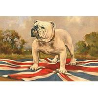 The British Bulldog By 19th Century English School: Category: Art Currency: GBP Price: GBP33.00 Retail Price: 33.00 Animal British New…