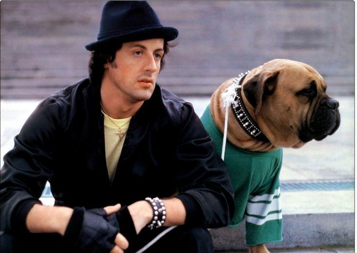 Stallone no tenia para comer y vendió su perro Butkus por $25 dólares
