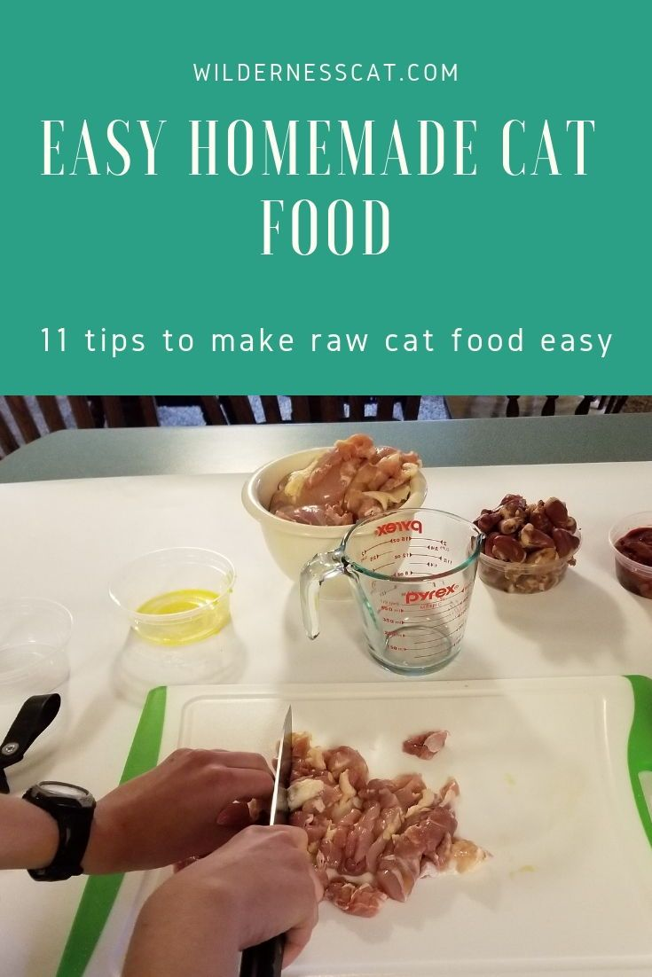How To Make Raw Cat Food 11 Hacks To Make It Easy Raw Cat Food Recipes Homemade Cat Food Homemade Raw Cat Food