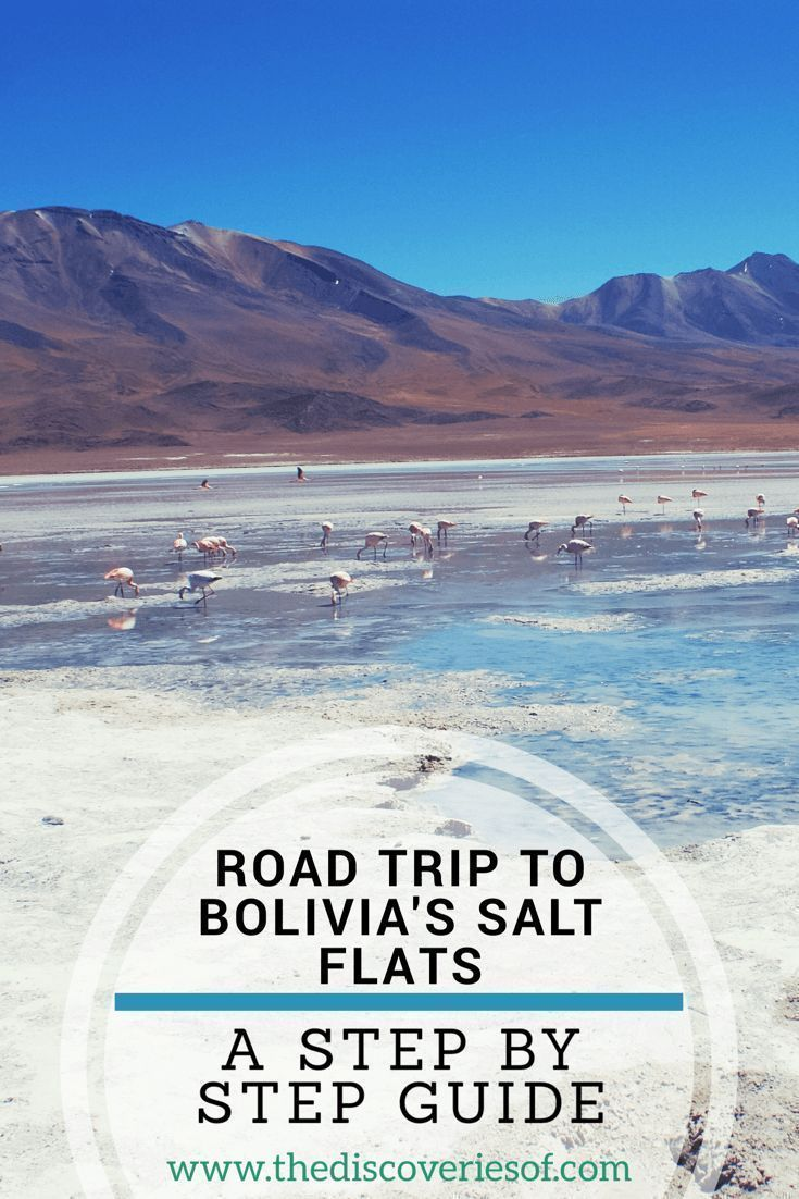 Travelling To The Salt Flats In Bolivia Or The Salar De Uyuni Is