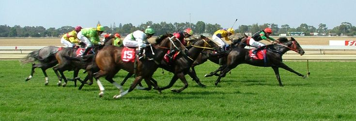 #HORSE RACING  Saturday local horse racing focuses on #Turffontein new course as the highlighted race meeting of the weekend, it's a stand-alone local meeting that comprises of nine races with the feature race being the #Itsarush.co.za, Pinnacle Stakes, over 1400 meters.  https://www.justbet.co.za/horseracing/