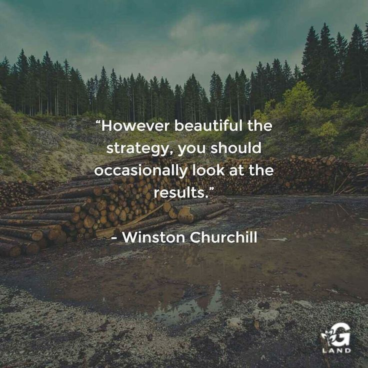 However beautiful the strategy you should occasionally look at the results. #quote #quotes