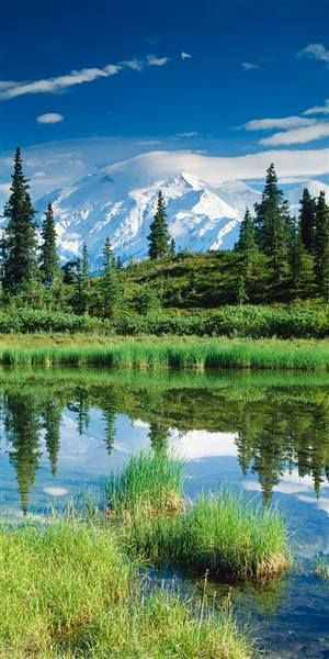 Mount McKinley with Pond, Denali National Park and Preserve