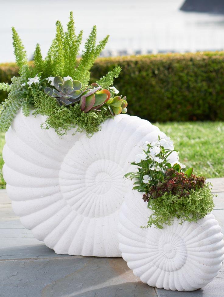 43 best rose house images on pinterest jaipur engine for Nautilus garden designs