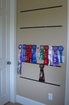 Been There Dunne That: Horse Show Ribbons