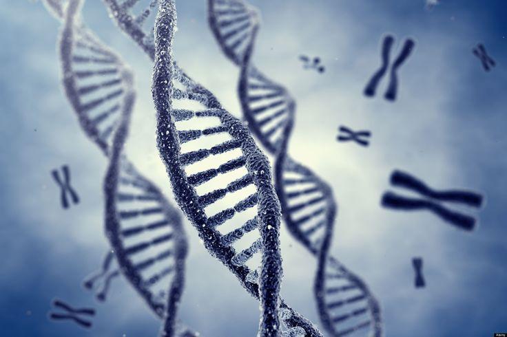 Si l'on sait que les traumatismes psychiques influent les comportements et sur la santé, les travaux montrent qu'ils attaquent directementnotre ADN.........DOCUMENT........