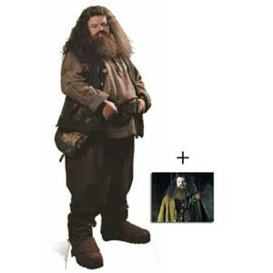 From a wig and beard to a pink umbrella, here are all the items you need to dress up in a Hagrid costume!
