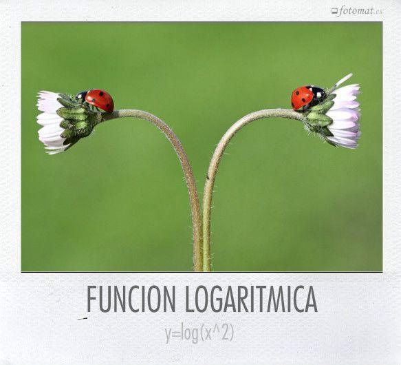 Gráficas de funciones logarítmicas