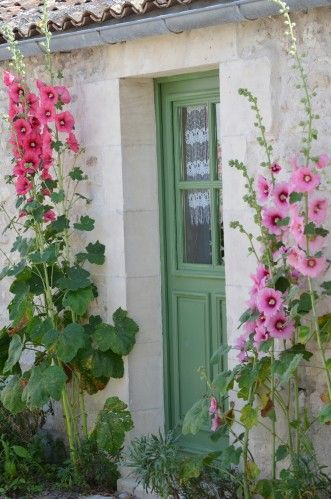 "Pink Hollyhocks and a green door welcome you to the ""COZY"" Looks exactly like my grandparents ""Milk"" House"
