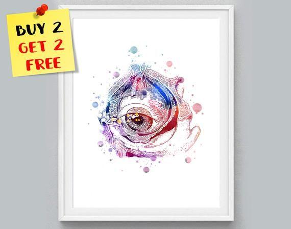 Fovea Watercolor Print CANVAS Retinal Human Eye Optometrist Office Medical Art