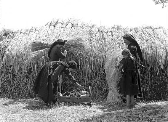 Nelly's, «Hπειρώτισσες στις θημωνιές» (Φωτογραφικό Αρχείο Μουσείο Μπενάκη)
