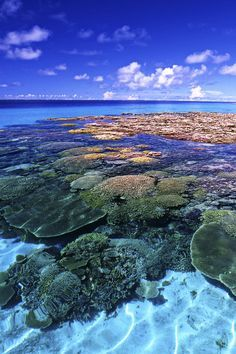 Marshall Islands  @michaelOXOXO @JonXOXOXO @emmaruthXOXO  #MAGICALMARSHALLISLANDS