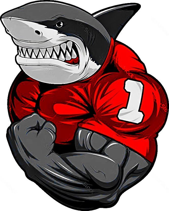 настоящее время крутые картинки акул качков настучала пальчиками