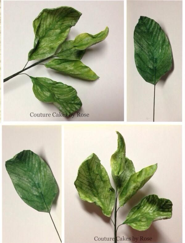 Wafer paper leaves