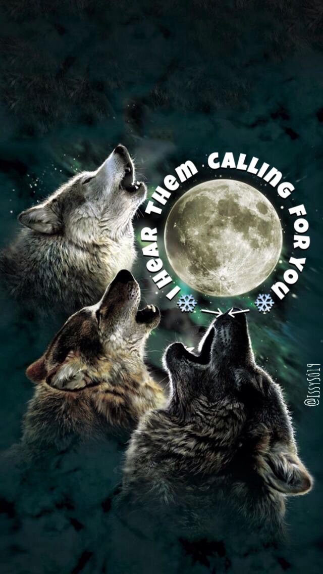 One Direction - Wolves