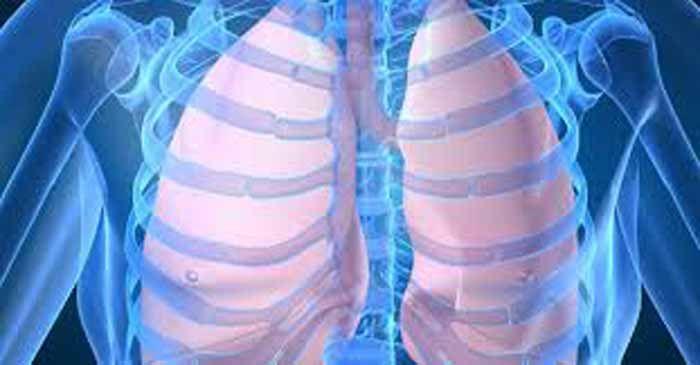 A bronquite, que pode ser crónica ou aguda, manifesta-se normalmente por tosse com ou sem expectoração e inflamação nas vias respiratórias. Para atenuar os sintomas das crises, pode recorrer a um remédio caseiro, com resultados satisfatórios. Faça um chá de gengibre:   Ferva 1 litro de água com 20 gramas de gengibre cortado às rodelas durante cinco minutos. Deixe repousar mais 10 minutos com o recipiente tapado, coe e beba 3 a 4 chávenas por dia durante 3 dias.