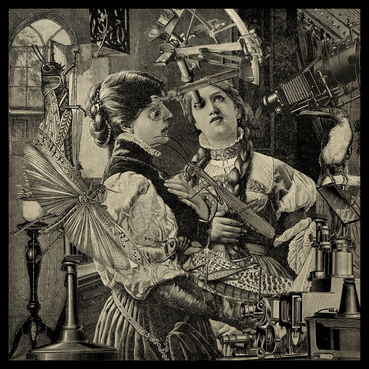 "vickyveiled:  Steampunk Art--  Residuum Erucae Comedit Lucusta (by seriykotik1970)      ""The Grasshopper lies Heavy"" (Joel 1:4)"