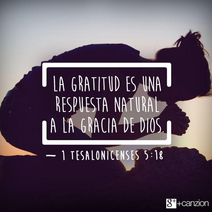 Señor, ayúdame a valorar todo lo que me rodea y a ser agradecido. — Pin it «Sean agradecidos en toda circunstancia, pues esta es la voluntad de Dios para ustedes, los que pertenecen a Cristo Jesús». —1 Tesalonicenses 5:18