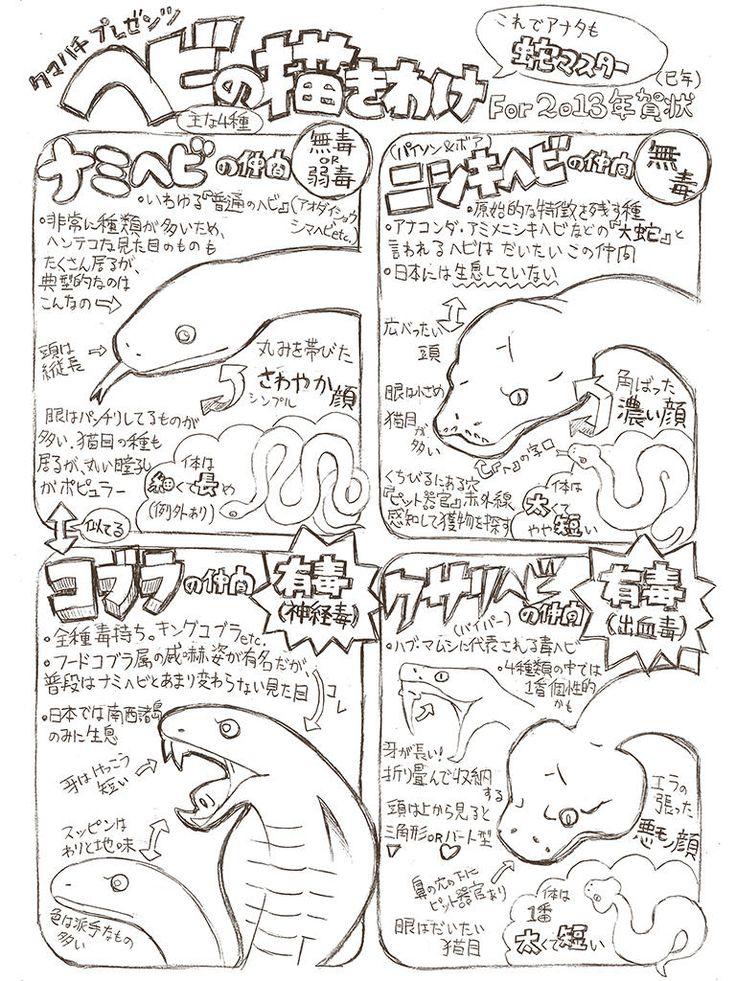 「図解・ヘビの描き分け方」/「クマハチ」のイラスト [pixiv]