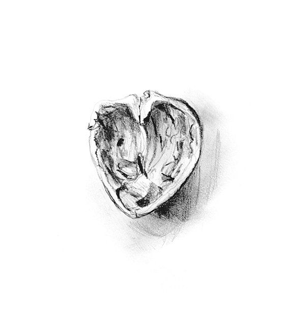 pencil drawing of a pencil. giclee art print of a pencil drawing walnut. 5 by zendrawing, \u20ac