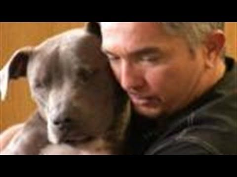 How to Raise the Perfect Dog by Cesar Milan. Watched this whole video very informative, it's a must see