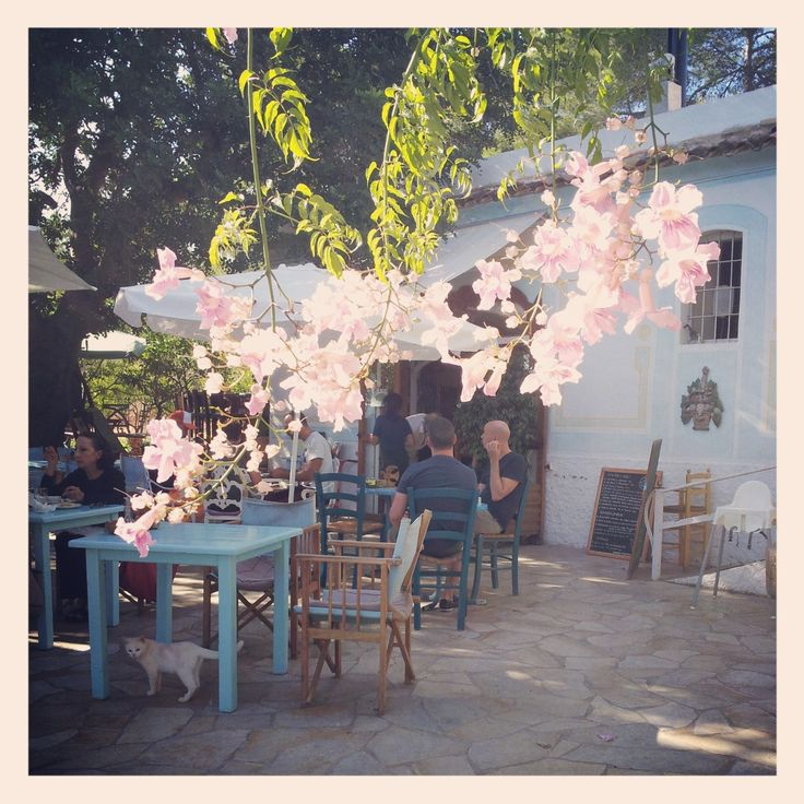 ☀️ Restaurant La Paloma. San Lorenzo Ibiza. Bruisend. Goed eten. Bijzonder charmant. Tel. 971 325 543