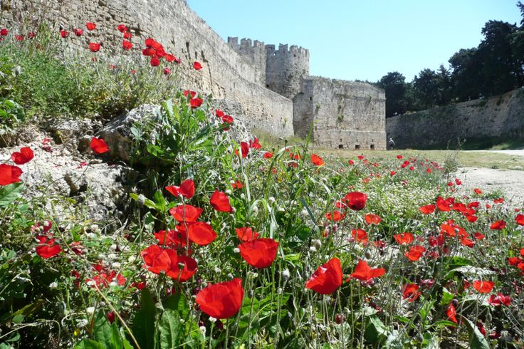 Find out about the events taking place in #Rhodes this #summer!