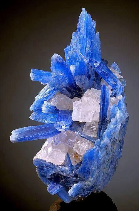 Kyanite crystals with Quartz! From Barra de Salinas, Coronel Murta, Jequitinhonha Valley, Minas Gerais,Brazil