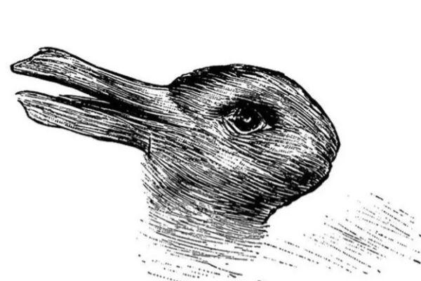 Esto se trata de una antigua ilusión óptica, fue publicada en una revista humorística alemana en el año 1892, tu...
