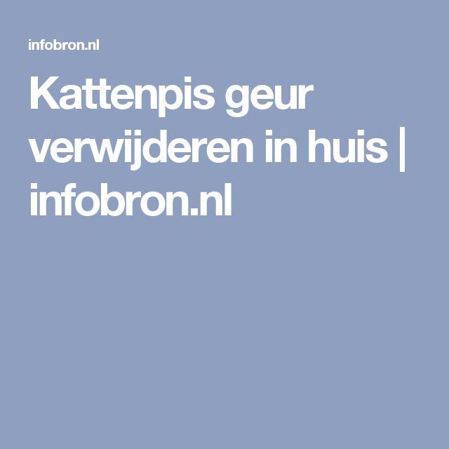 Kattenpis geur verwijderen in huis   infobron.nl