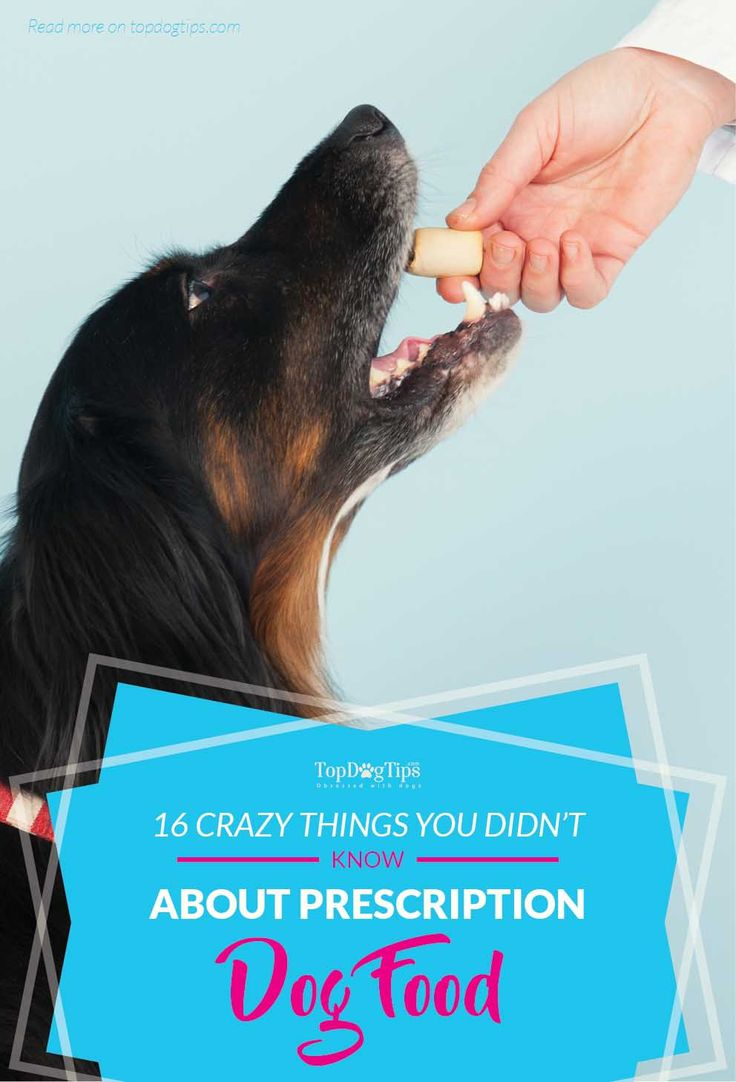 """16 Things You Didn't Know About Prescription Dog Food. With so much controversy surrounding pet food industry, it seems easier to just pass the buck, and let somebody else tell you what to do. That's why many of us consult with vets. We assume that a veterinarian will prescribe the best and """"right"""" prescription dog food diet for our dogs that will offer a balanced diet. #dog #prescription #food #health #dogs #pets #vets"""