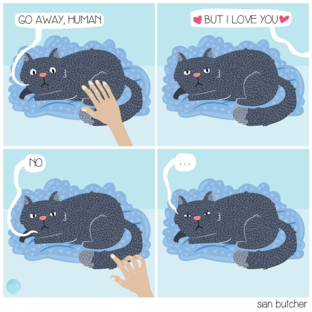 Having your affection rejected for the first time. | 26 Important Firsts Every Cat Owner Has Experienced
