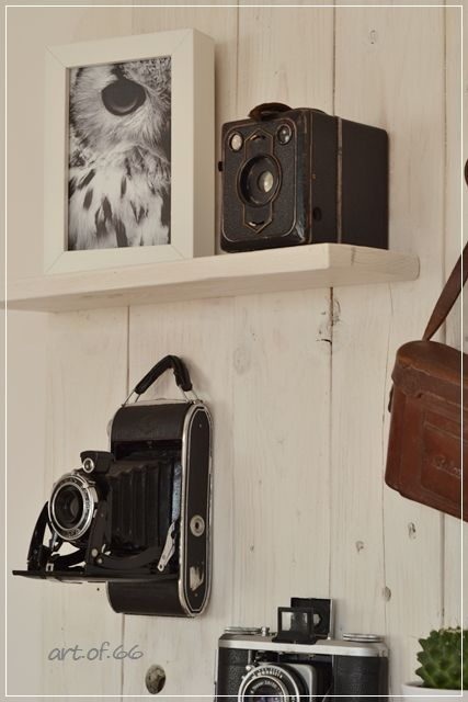 art.of.66: Alte Kameras ins rechte Licht gerückt - a wall gallery of old cameras, very cool!