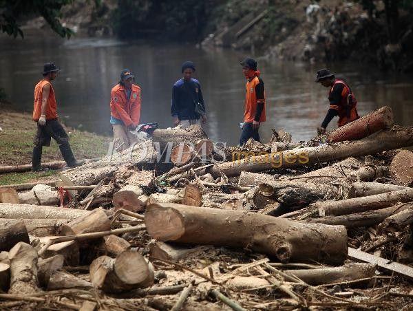 Petugas Dinas Kebersihan DKI Jakarta memotong gelondongan kayu yang terseret air Sungai Ciliwung di Kelurahan Cililitan, Kecamatan Jatinegara, Jakarta Timur, Senin (24/11/2014). Gelondongan kayu menyumbat aliran air mengakibatkan banjir di sekitaran bantaran kali lebih lama surut