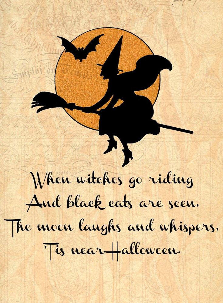 Halloween Witch Goblin Black Cat JackOLantern Bat Skull