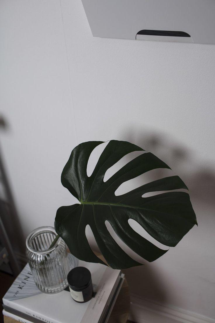 Vase ideas.