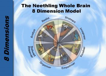 The key thinking processes associated with each of the eight quadrants, should give you a clear indication of the different brain preferences.  www.brainsight.co.in