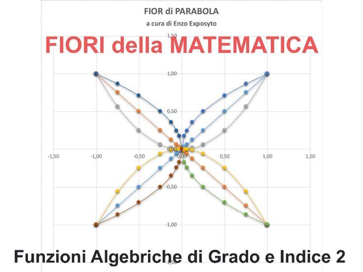 FIORI della MATEMATICA - FUNZIONI ALGEBRICHE di GRADO 2 e INDICE 2
