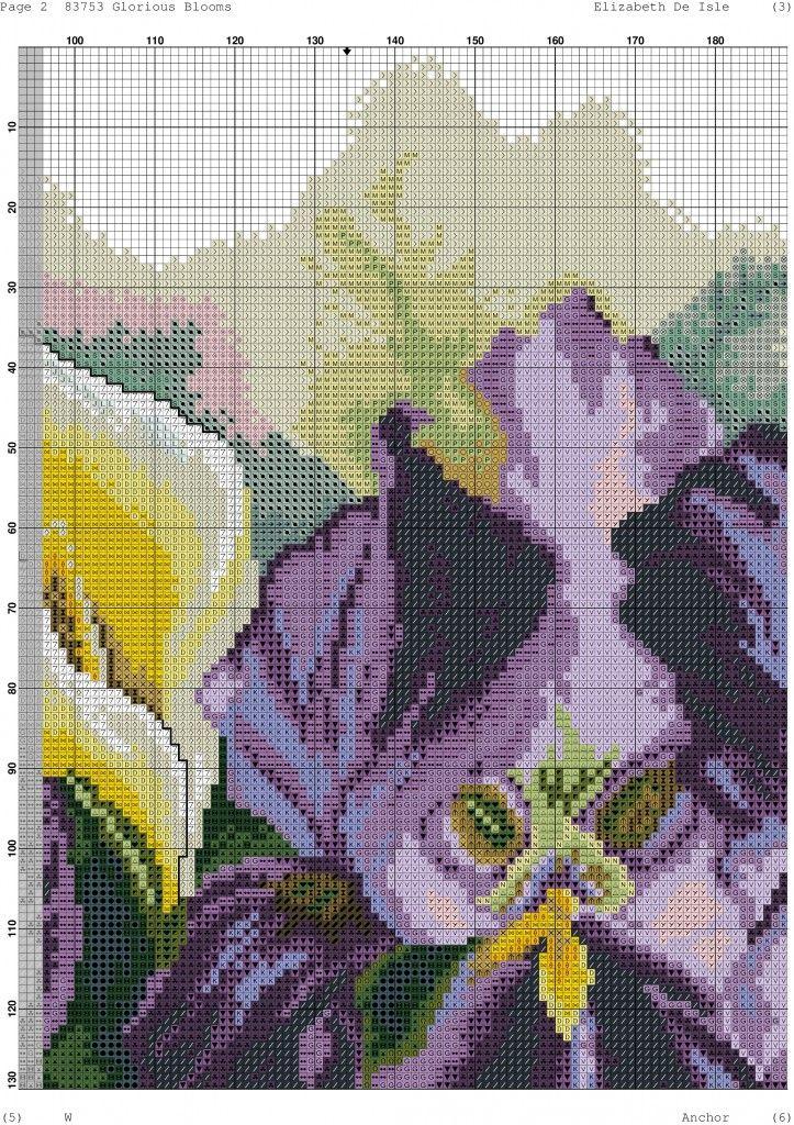 Glorious Blooms-002
